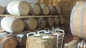 Lunch in a Chianti cellar - De Gustibus Wine and Food tours