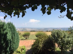 View from Brunello winery La Fornace - De Gustibus wine and food tours